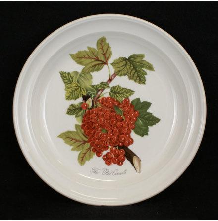 Pomona Assiett röda vinbär